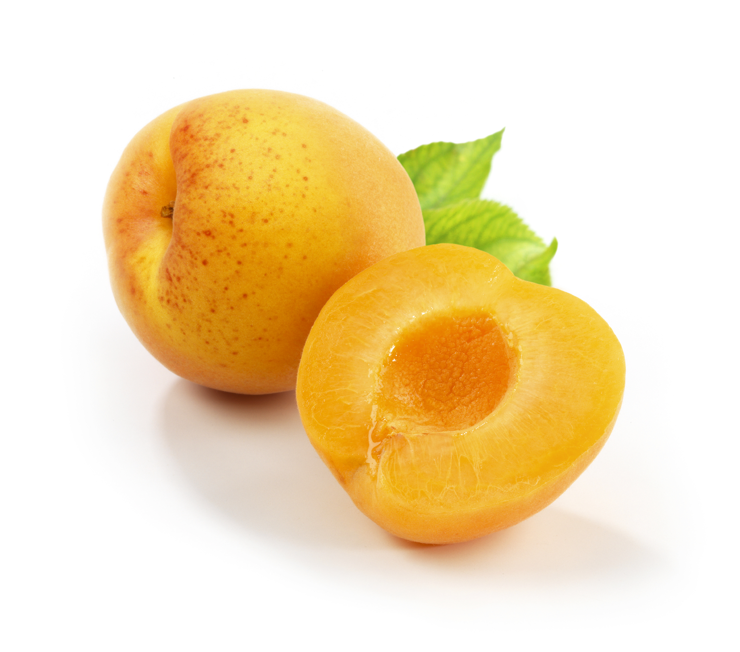 Apricot Halves - Bithell Farms