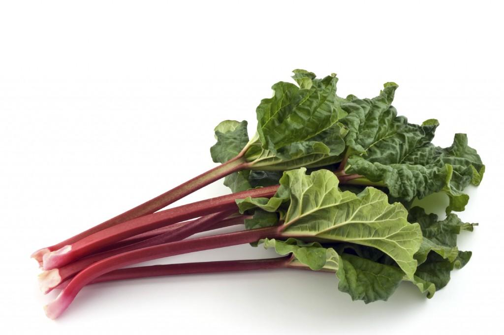 red-rhubarb